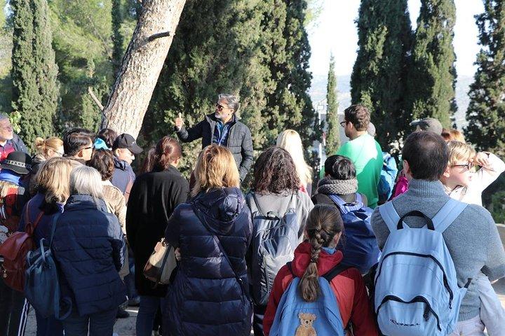 Bethlehem & Dead Sea Full-Day Tour, ,