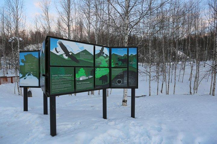 Northern Lights and Arctic Circle Day Trip from Fairbanks, Fairbanks, AK, ESTADOS UNIDOS