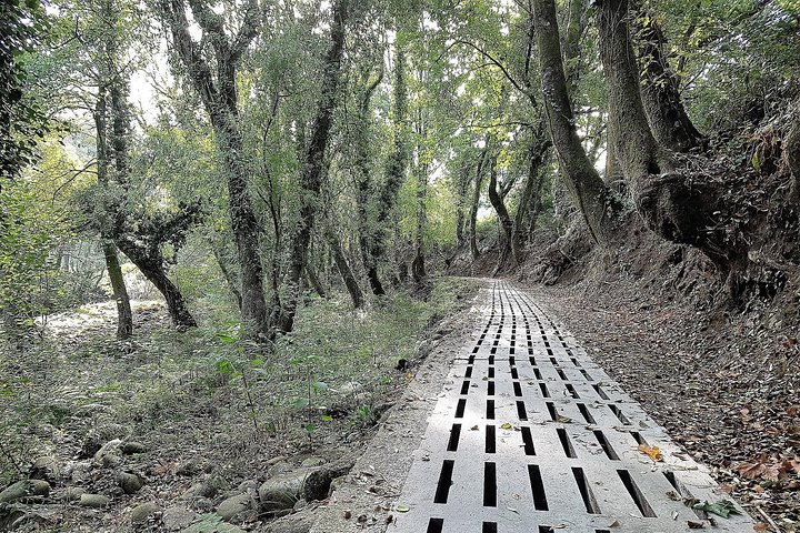 Discovering Sistelo - Hiking Tour, Oporto, PORTUGAL