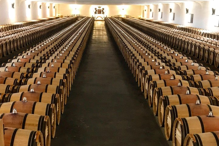 Bordeaux Wine Country Private Day Tour with Winery Visits, Bordeaux, FRANCIA