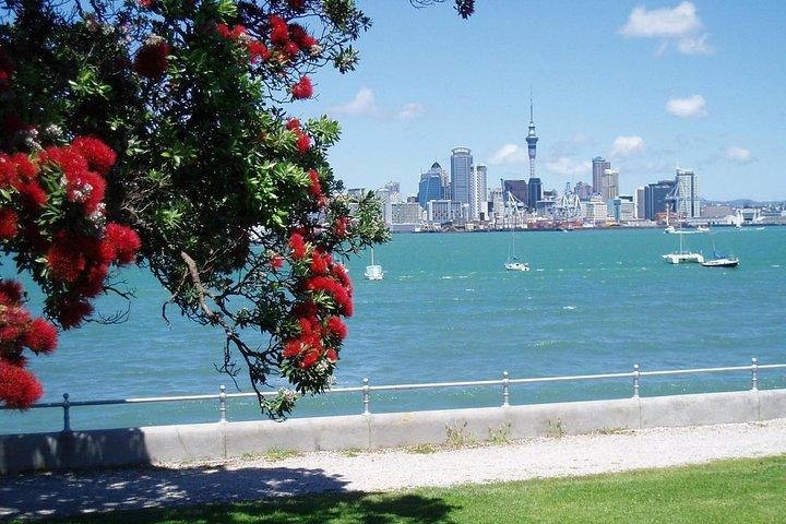 Recorrido privado: Recorrido por la ciudad de Auckland y la campiña, Auckland, NUEVA ZELANDIA
