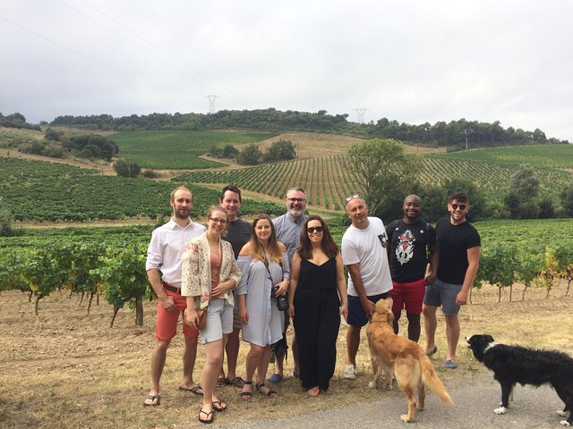 Private Wine day tour from Carcassonne and around., Carcasona, FRANCIA