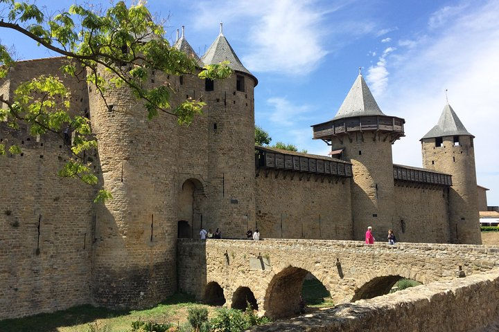 Cité de Carcassonne and Wine Tasting Private Day Tour from Toulouse, Toulouse, FRANCIA