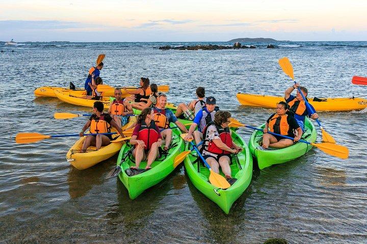 Bio Bay Night Kayaking - Round -Trip Transportation from San Juan area, ,