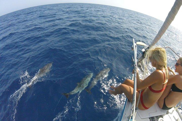 Flounder Yacht Sailing Tours, Fuerteventura, ESPAÑA