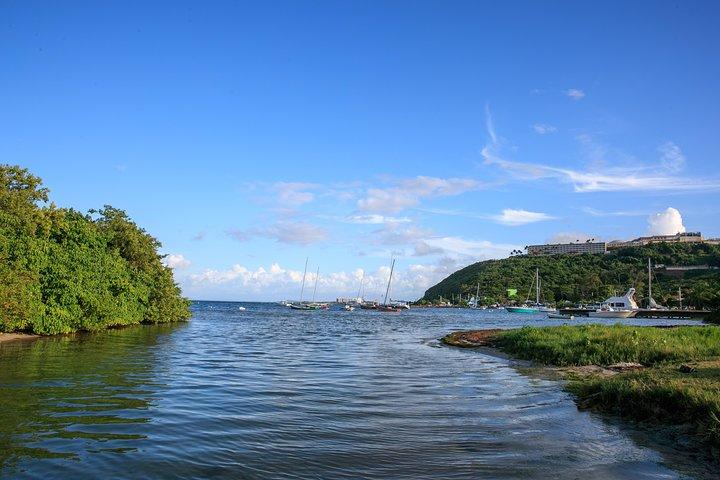 Bio Bay Night Kayaking - 8:00pm Round-trip Transportation from San Juan Area, Luquillo, PUERTO RICO