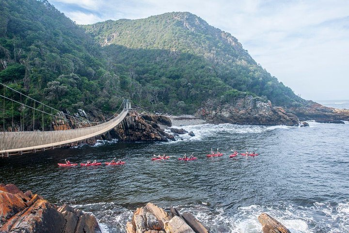 4-Day Garden Route Adventure Tour from Cape Town, Cape Town, South Africa