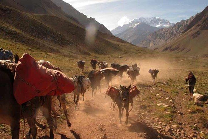 Full Day Aconcagua Base Camp Trek, Mendoza, ARGENTINA