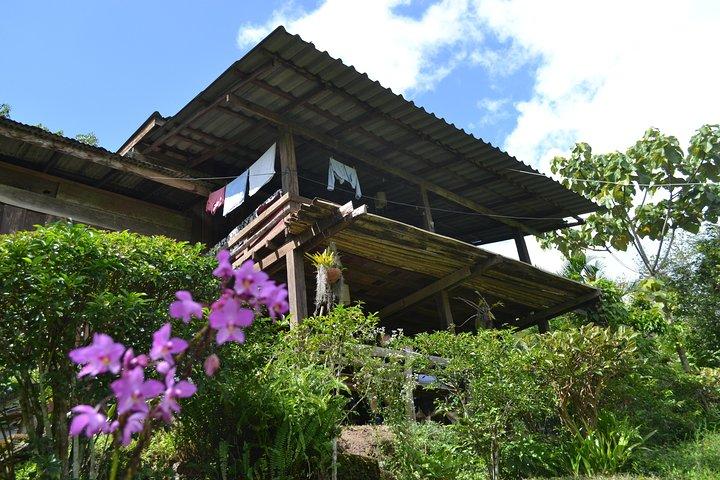 3-Day Chiang Dao Mountain Trek, Chiang Mai, Thailand