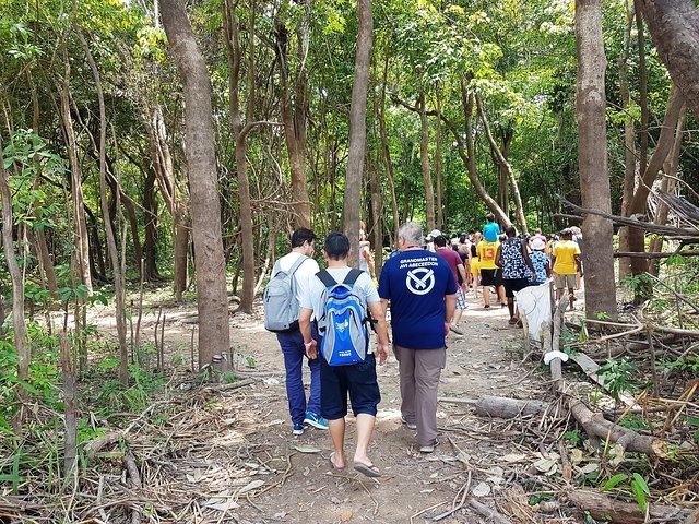 Recorrido de expedición de medio día por el río Negro del Amazonas, Manaus, BRASIL
