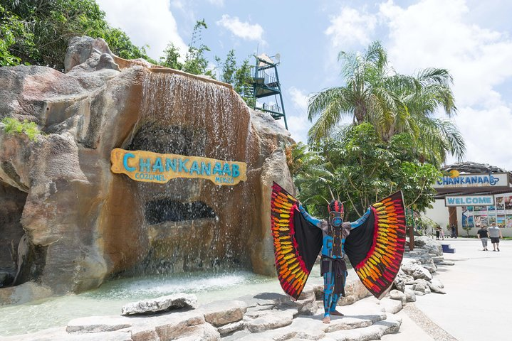 Paquete Ulyimate con todo incluido para el parque Chankanaab de Cozumel, Cozumel, MEXICO
