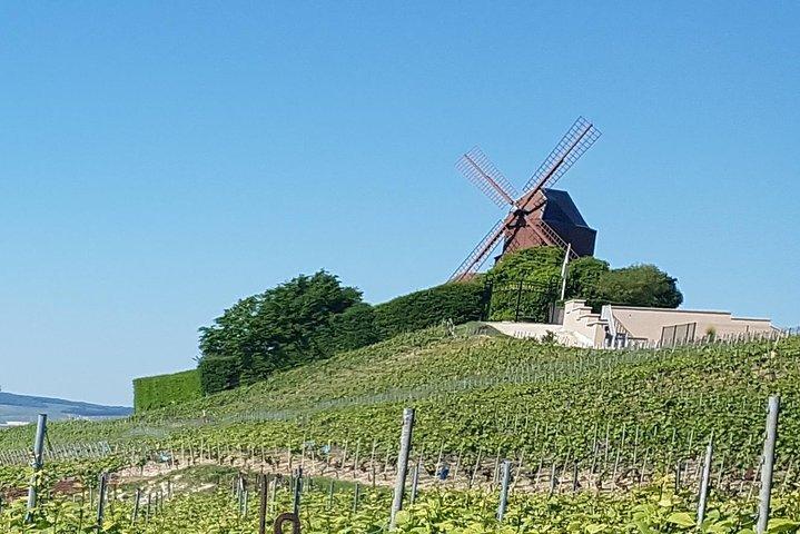 Champagne UNESCO Tour, Reims, FRANCIA