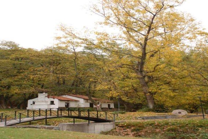 Villavicencio Natural Reserve Half-Day Tour from Mendoza, Mendoza, ARGENTINA