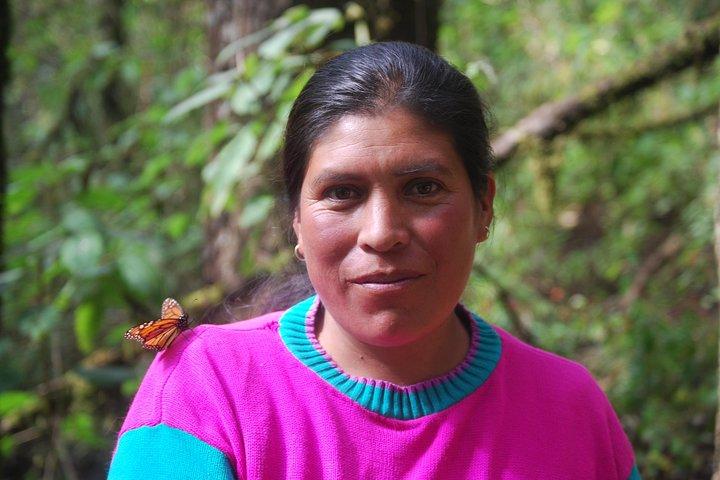 7 Day-Monarch Butterfly Ecofriendly Tour in Mexico, Ciudad de Mexico, MÉXICO