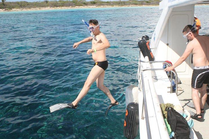 Tour de buceo de superficie en la isla de Catalina de un día completo desde Bávaro, Punta de Cana, REPUBLICA DOMINICANA