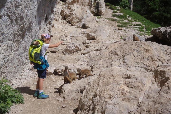 Hike the Dolomites - One day private excursion nearby Bolzano, Bolzano, ITALY