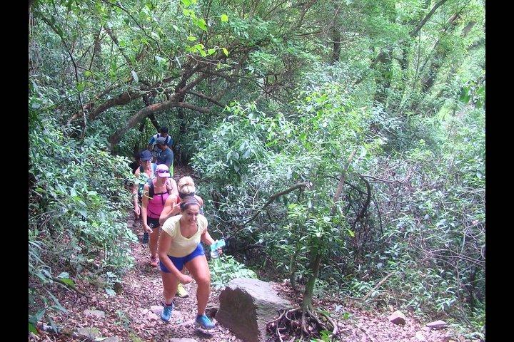 Yungas Half-Day Tour from Tucuman, San Miguel de Tucuman, ARGENTINA