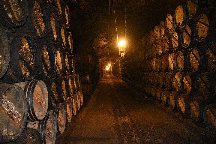Rioja Alta and Rioja Alavesa Wine Tour, Pamplona, ESPAÑA