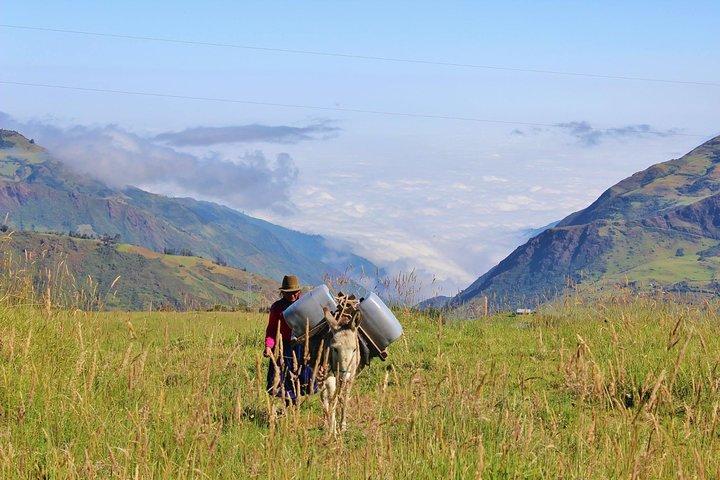Excursión de día completo a las ruinas de Ingapirca y tren Nariz del Diablo desde Cuenca, Cuenca, ECUADOR