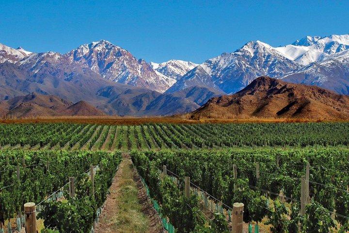 4-Days Trip to Mendoza and The Andes, Mendoza, ARGENTINA