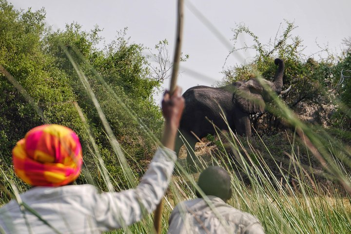 12-Day Desert and Delta Express Adventure Camping Tour from Livingstone, Livingstone, ZIMBABUE