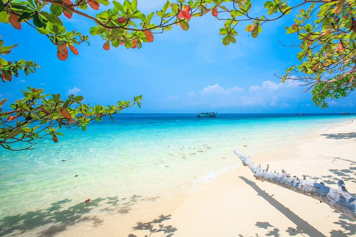 Early Bird Similan Islands Snorkel Tour by Siam Adventure World from Khao Lak, ,