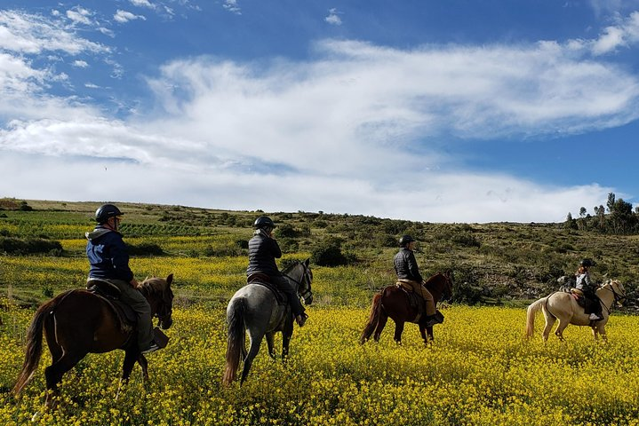 Mystical Horseback Riding Tour from Cusco, Cusco, PERU