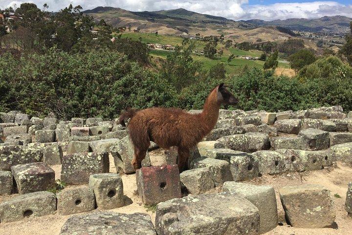 Private Ingapirca Ruins Tour, Cuenca, ECUADOR