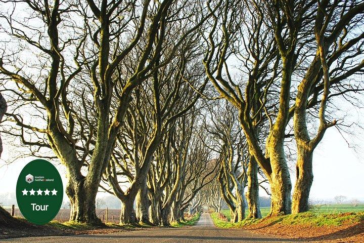 Belfast Combination Tour: Game of Thrones Film Locations & Belfast City Tour, Belfast, IRLANDA