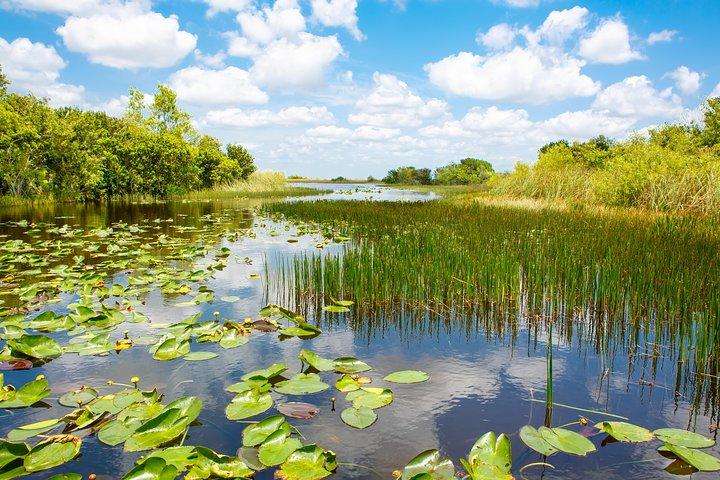 Aventura em aerobarco por Everglades, na Flórida, além de passeio de barco em Biscayne Bay, em Miami, Miami, FL, ESTADOS UNIDOS