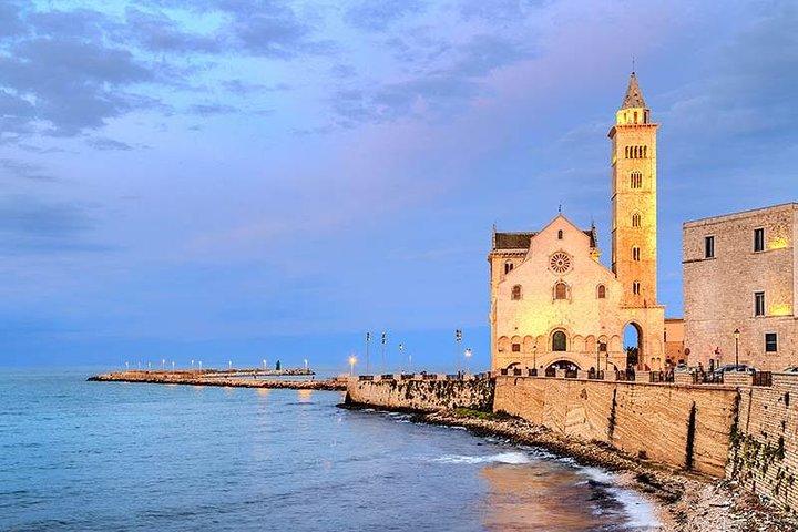 TRANI and Castel Del Monte UNESCO from your accomodation, Bari, Itália