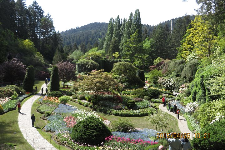 Beautiful Butchart Gardens and City Highlight, Isla de Vancouver, CANADA