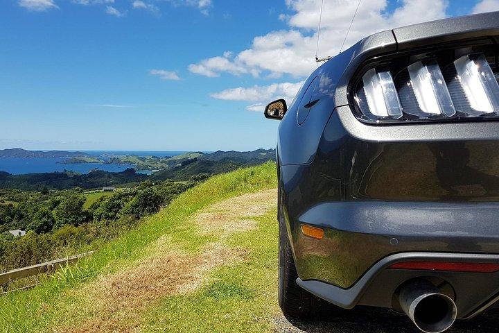Scenic Mustang Convertible Tour with Winery Lunch, Bahia de Islas, NUEVA ZELANDIA