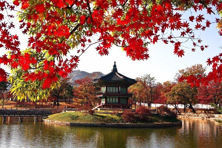 The Beauty of the Korea Fall foliage Discover 9days 8nights, Incheon, COREA DEL SUR