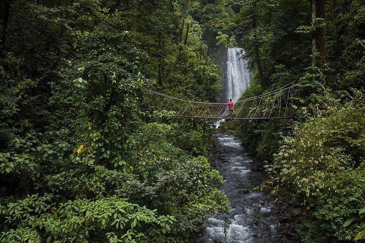 El Tigre Waterfalls Monteverde, Monteverde, COSTA RICA