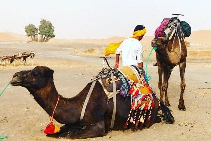 Camel Ride with 1 night in Luxury Desert Camp, Fez, MARROCOS