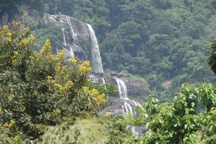 6 Days Udzungwa Mountain NP, Ruaha NP and Mikumi NP Private Wildlife Safari, Dar es Salaam, Tanzania