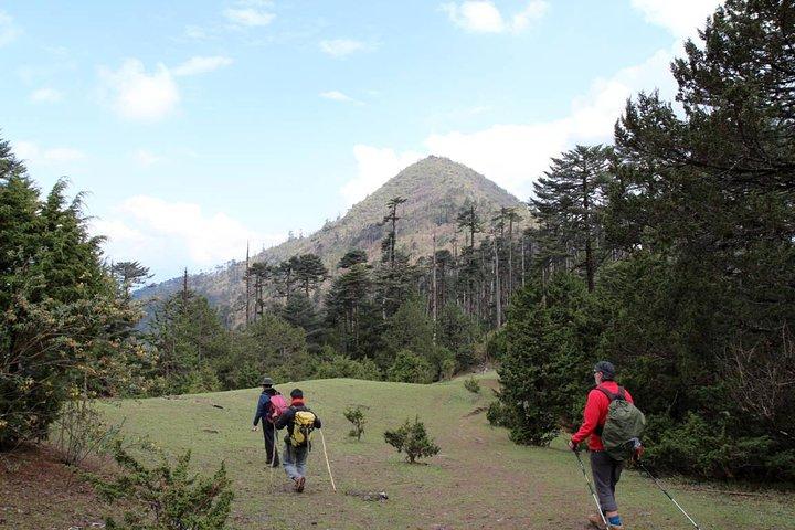 Bhutan Cultural Tour with Day Hikes, Paro, BUTAN