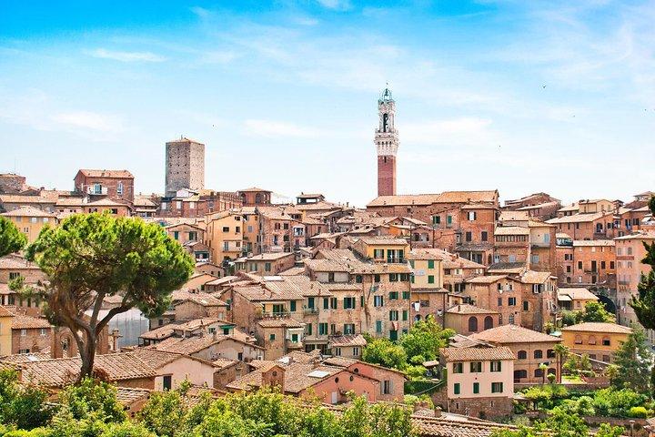 Small Group Pisa Day Trip to Siena and San Gimignano Including Wine Tasting, Pisa, ITALIA