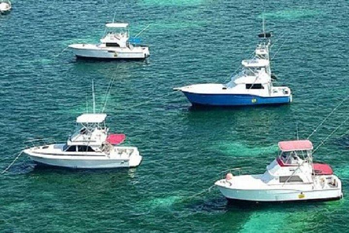 Deep Sea Fishing in Punta Cana (Half Day), Punta de Cana, REPUBLICA DOMINICANA