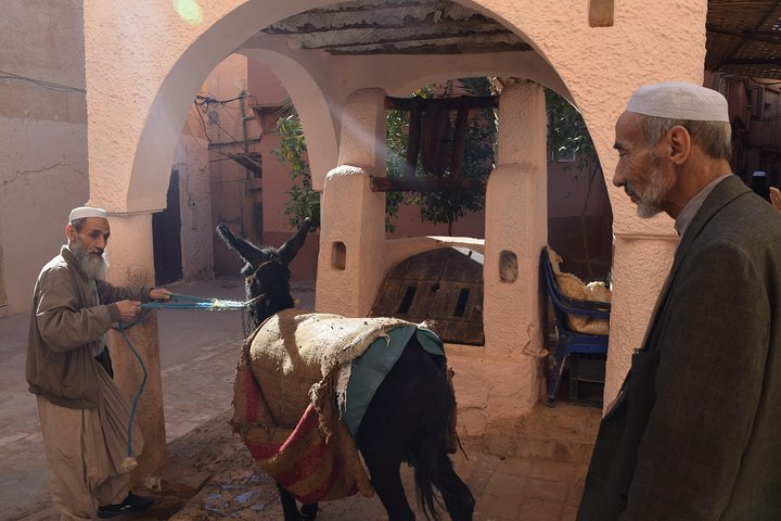 Ghardaia & Tamanrasset Combo Package By Algeriatours16, Argel, Algeria