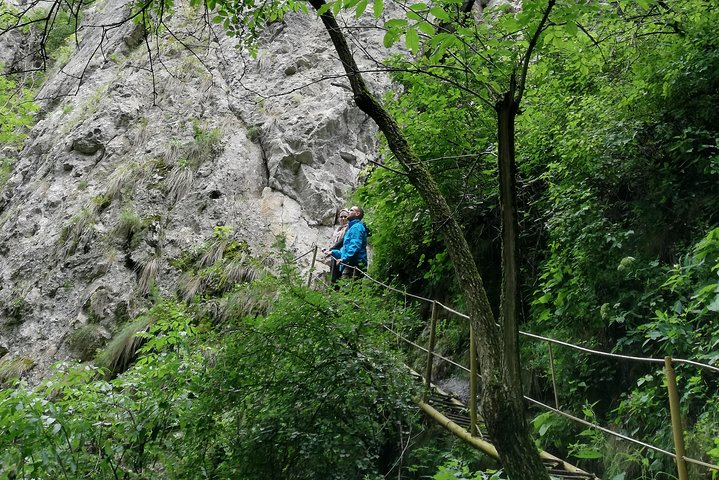Varghis Gorge Tour from Baile Tusnad, ,