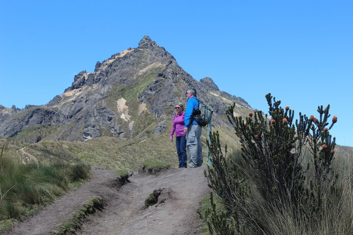 8-Day Trip in the Andes including Upper Amazon in Tena, Quito, Equador