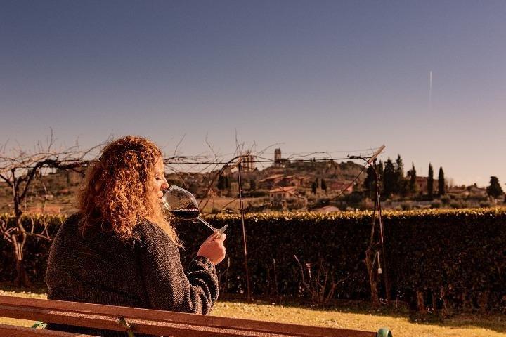Wine & EVO Oil Tasting with Light Dinner, San Gimignano, ITALIA
