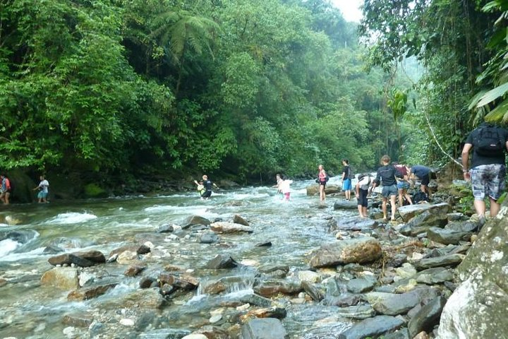 5-Day Lost City Trek in Santa Marta, Santa Marta, COLOMBIA