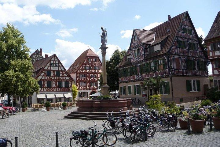 Bicycle Tour from Heidelberg to quaint Ladenburg., Heidelberg, ALEMANIA