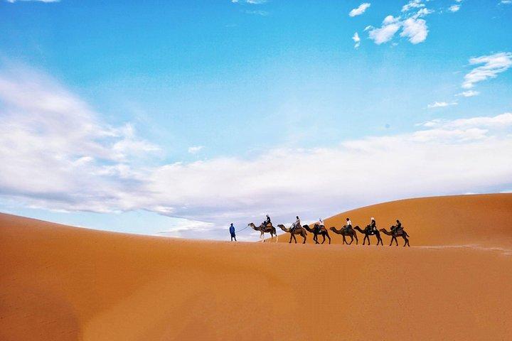 Fes To Fez Desert and Camel Trekking tour 1 Night 2 Days, Fez, MARRUECOS