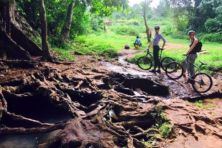 Lake Victoria Island Cycling Tour from Kampala, Kampala, UGANDA