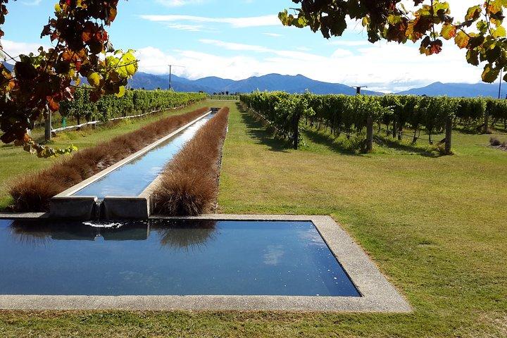 Picton Shore Excursion : Marlborough Wine Tour, Picton, New Zealand
