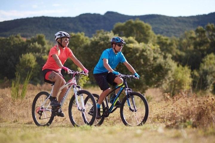 Rent a Mountain Bike 1 until 7 Days in Maspalomas : Visit Gran Canaria South, Gran Canaria, ESPAÑA